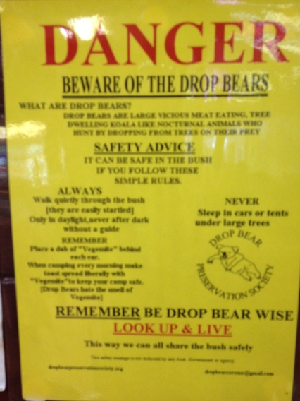 Image result for beware drop bears